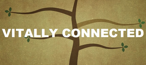 Vitally Connected: The Bible's Teaching on Union with Christ